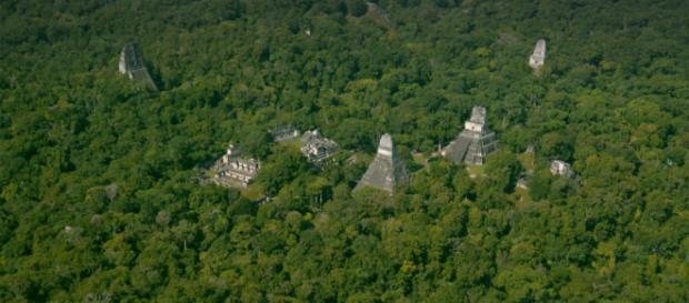 O întreagă rețea de orașe ale unei mari civilizații descoperită în mijlocul junglei cu ajutorul tehnologiei LiDAR