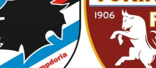 Sampdoria-Torino: dove vederla in diretta streaming e in tv