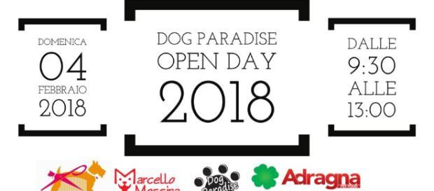 Locandina dell'evento al Dog Paradise