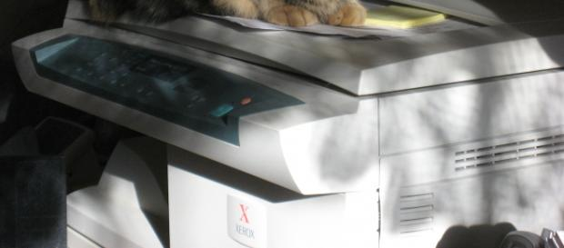 Xerox copier - flickr/mighty free