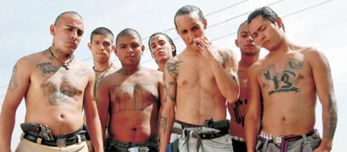 Evolución de la violencia de pandillas • El Nuevo Diario - com.ni