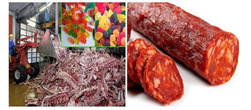 Alguns alimentos são produzidos de uma maneira bizarra. (Foto Reprodução).