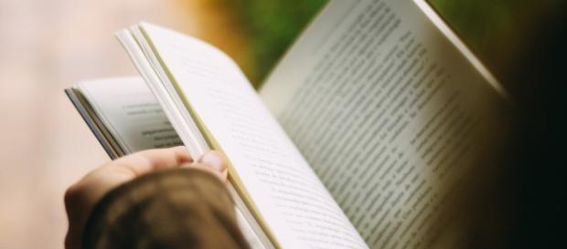 Zeit wieder einmal ein Buch in die Hand zu nehmen.