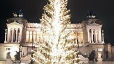Spelacchio: l'odissea del triste albero di Natale finirà giovedì 11 gennaio