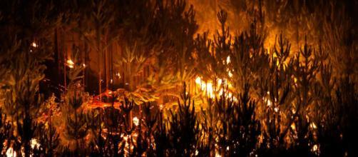 Chile: volviendo a construir resistencia productiva luego de los ... - blogspot.com