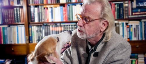 ¿Qué significa soñar con animales domésticos que hablan?