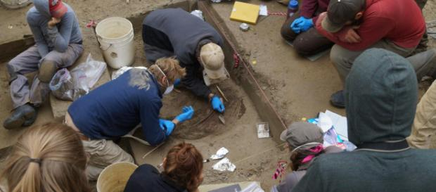 Excavations at the Upward Sun River archaeological site in Alaska [Image credit: Ben Potter]