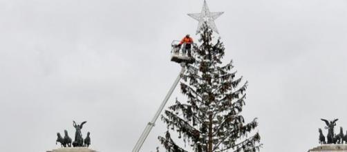 Spelacchio, l'albero di Natale più famoso al mondo.