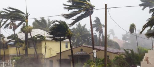 États-Unis : ce qu'il faut savoir sur l'ouragan Michael