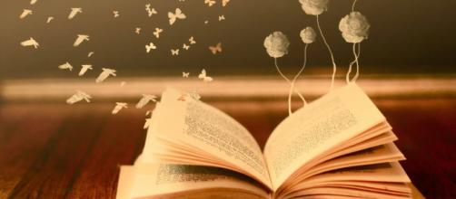 Leitura: a grande ferramenta para a interpretação do mundo e de si mesmo.