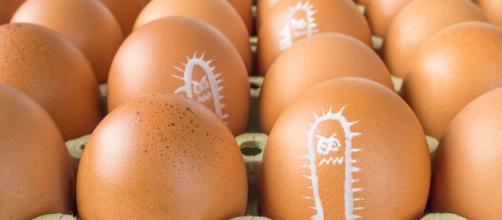 Uova fresche contaminate e ritirate dal mercato perchè dannose