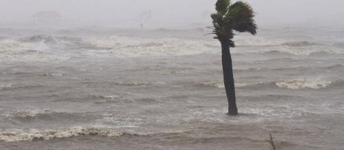 BAJA CALIFORNIA SUR/ La tormenta tropical Sergio toca tierra con vientos de 75 km por hora