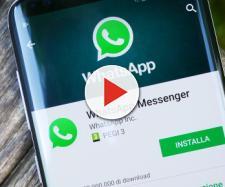WhatsApp permette di scaricare le GIF linkate prima di inviarle