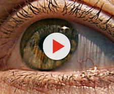 Stati Uniti: ricreata in laboratorio retina umana - fanpage.it