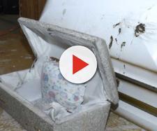 La bara bianca all'interno della quale erano nascosti i corpi (fonte: Detroit News)