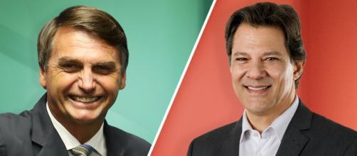 Bolsonaro aparece com 59% dos votos válidos em pesquisa Ibope, contra 41% de Fernando Haddad, (foto reprodução).
