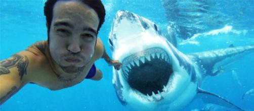 Uma selfie diferente. (Imagem/Reprodução via BlastingNews).