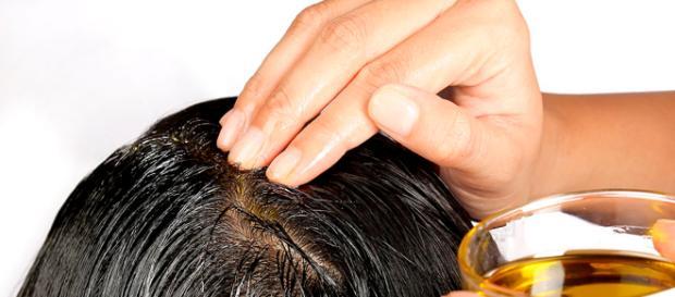 A umectação poderá ser aplicada, inclusive, na raiz do cabelo