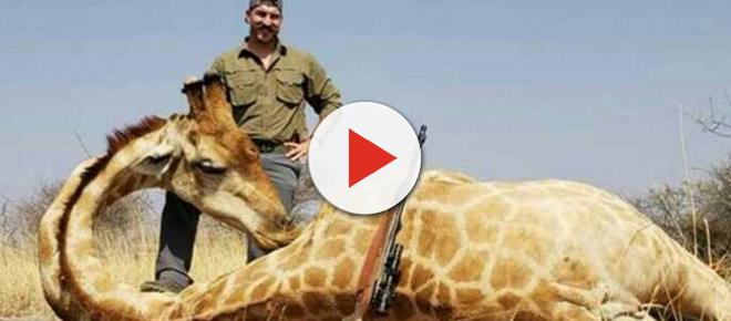 Idaho Fish & Game Commissioner quits over killing multiple African animals