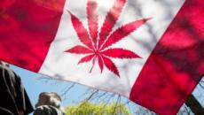 Cannabis legale in Canada: il caso della Corea del Nord
