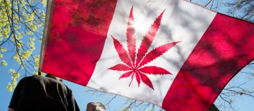 Canada, entrata in vigore la legge sulla legalizzazione della cannabis