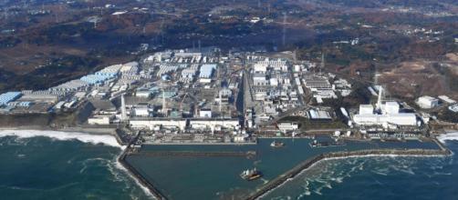 Fukushima, Telegraph: 'Il Giappone vorrebbe svuotare l'acqua contaminata contenuta nei reattori della centrale nell'oceano'