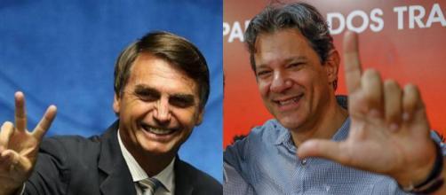 TSE ordenou remoção de campanha de Fernando Haddad que divulgava informação falsa sobre Jair Bolsonaro. (foto reprodução)