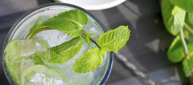 Classic mojito recipe with variations