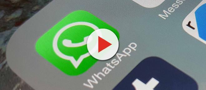 Whatsapp: silenziare le chat con la nuova modalità Vacation Mode in arrivo