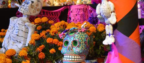 Dia de los Muertos decorations bring color to Halloween. [image source: Paolaricaurte/Wikipedia Creative Commons]