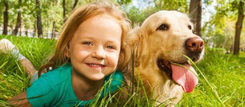 As 5 melhores raças de cães para se relacionar com crianças.