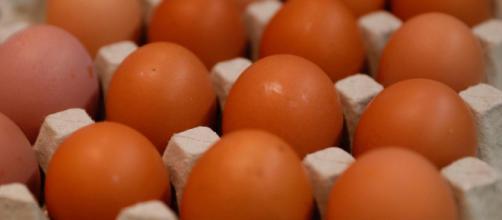 Il ministero della Salute fa ritirare uova fresche e marlin affumicato per rischio microbiologico