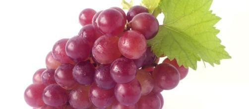 Una molecola preziosa in un chicco d'uva: il resveratrolo.