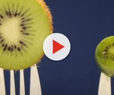 Il kiwi e le sue proprietà nutrizionali