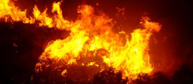 Riccione, pensionato nasconde i soldi nel garage: un incendio brucia le banconote.