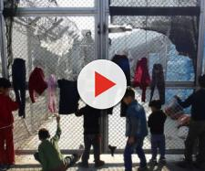Bambini sull'isola di Lesbo, tentano il suicidio