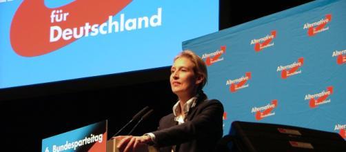 Alice Weidel (AfD) boccia la manovra italiana: ''È folle e a spese della Germania''.