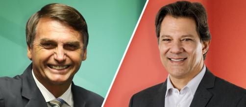 Jair Bolsonaro x Fernando Haddad: pesquisa divulgada