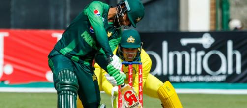 Pak vs Aus live cricket streaming on PTV Sports (Image via PCB/Twitter)