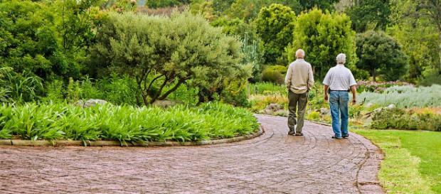 Pensioni e Manovra 2019, dopo il nuovo giudizio sul rating il Governo insiste su pensioni flessibili e reddito di cittadinanza