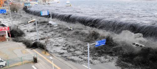 Tsunami no Japão em 2011. (Foto: Reprodução Internet)