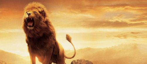 "Netflix is Set To Produce ""The Chronicles of Narnia"" film and original series. [Image Credit] Collider Videos - YouTube"