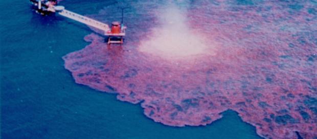 El reciente pacto comercial entre EEUU, Canadá y México expone al ambiente a graves daños. - inforegion.pe
