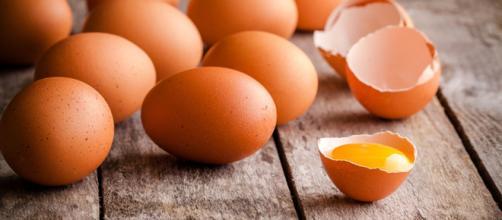 Lotti di uova contaminate dalla salmonella: l'allerta del Ministero della salute