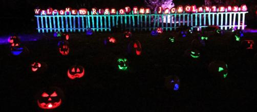 'Rise of the Jack O'Lanterns' at Old Westbury Gardens. / Images via Old Westbury, used with permission.