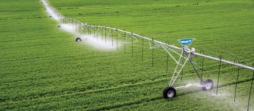 Alternativas para economizar água, garantem sustentabilidade a longo prazo
