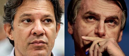Bolsonaro e Haddad ainda lideram as intenções de votos (foto reprodução).
