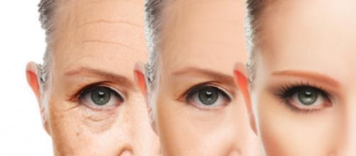 Com o passar dos anos, a pele vai perdendo elasticidade e alguns ingredientes podem ajudar a suavizar e retardas os efeitos da idade