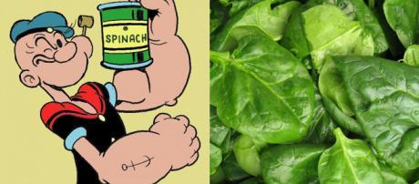 """El error en las espinacas que desacredita la rutina de """"Popeye ... - com.ar"""