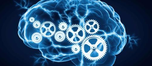Os exercícios para memória são muito úteis para quem quer manter o cérebro ativo e eficaz.